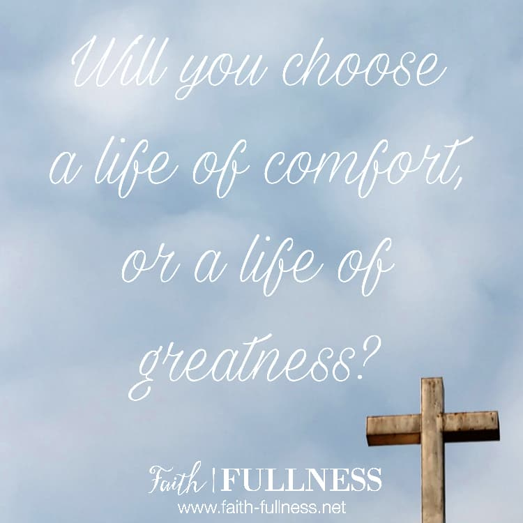 We are not taught to pursue and endure pain, we are taught to be victims and to blame others for our circumstances, but no one accomplishes anything great in life by being safe and comfortable, or by being a victim. | Faith-Fullness.net